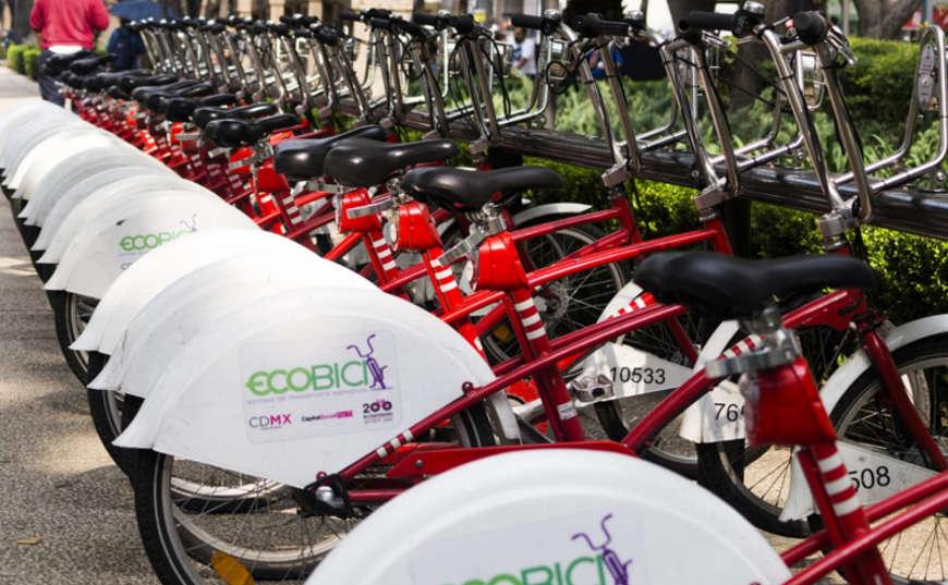 bicicletas negocio ecológico