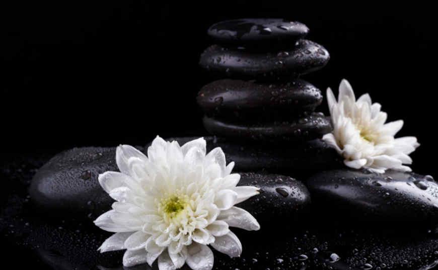 Rito Luna Nueva rocas para ambientes Feng Shui