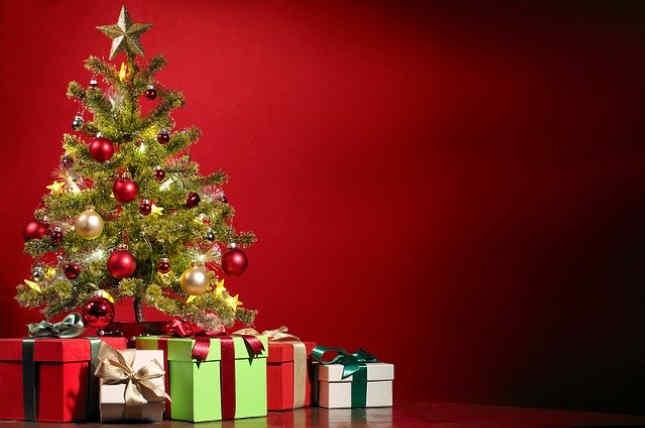 A prueba de deudas en Navidad por Mary Hunt - Revisión del libro