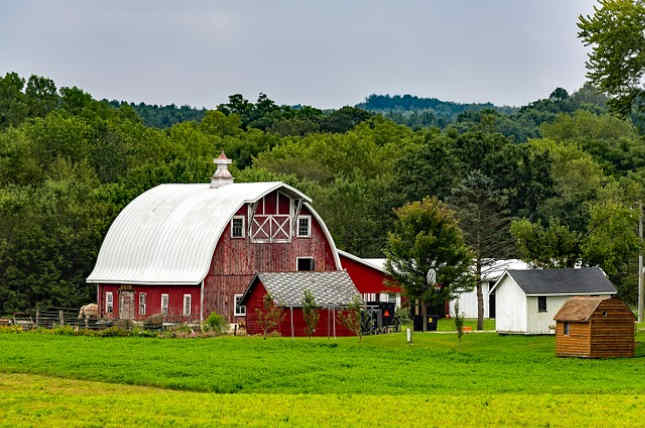 El truco de dinero de los Amish por Lorilee Craker - Compra a granel