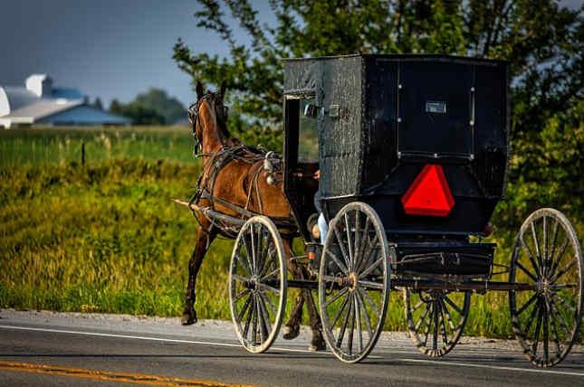 El truco de dinero de los Amish