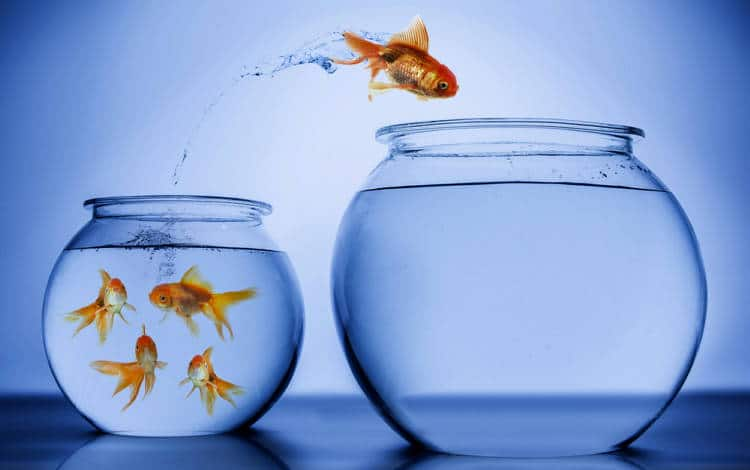 La clave del exito pensamiento positivo y accion positiva